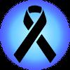Charity Pin